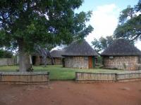 Mbuyu camp 4 hem