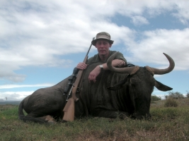 Gustaf N Blue Wildebeest.jpg